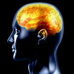 בירור בתוך המחשבה